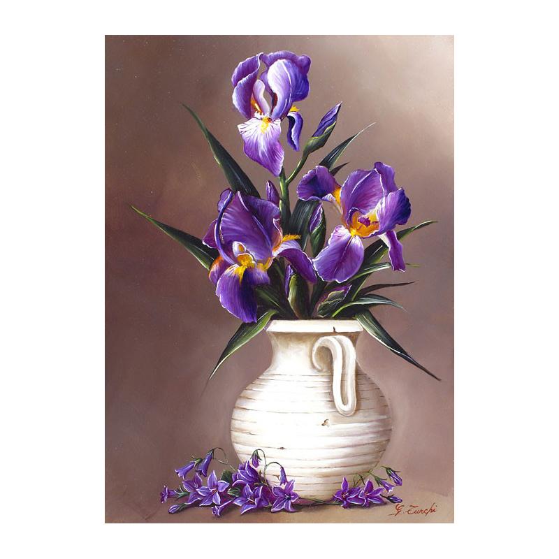 Bevorzugt iris.jpg HP75